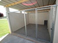 Courette extérieure du box individuel pour chien