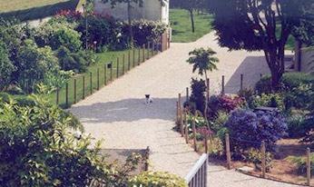 Parc de la pension pour chiens et chats en Île de France